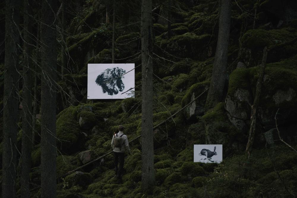 Teemu_Jarvi_Illustrations_Forest_Greetings_photoUntoRautio